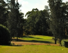 Hole # 13 – Gully Gully – Par 3, 128m index 17/35