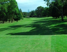Hole # 11 – Eden Glassie – Par 5, 441m index 12/28