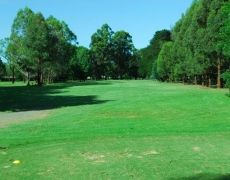 Hole # 15 – Pines – Par 4, 286m index 15/29