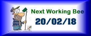 Next Working Bee – 20/02/18