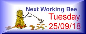 Next Working Bee – 25/09/18