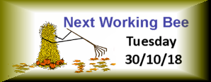 Next Working Bee – 30/10/18